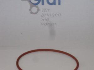 O-Ring MWM KD 210.5 [en]